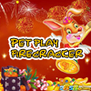 Pet play firecracker